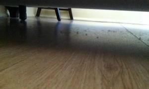 debajo-de-mi-cama