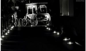 el_carruaje-blanco