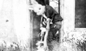 conejo-hacha